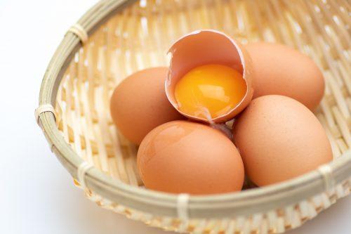 テンペラ 卵