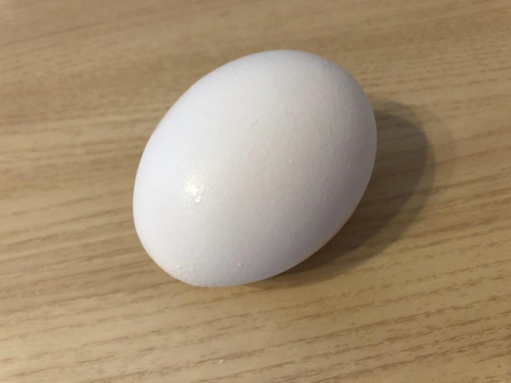 たまご 卵 タマゴ